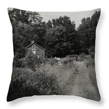 Throw Pillow featuring the photograph Grandpa's Barn by Michelle Wermuth