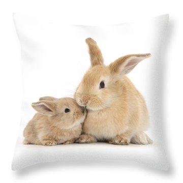 Throw Pillow featuring the photograph Grass Is For Sharing by Warren Photographic