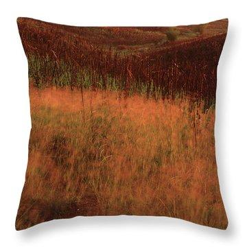 Grasses And Sugarcane, Trinidad Throw Pillow