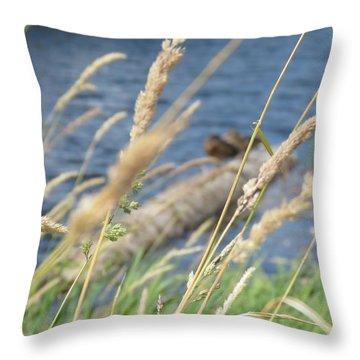 Grasses Ducks And Water Throw Pillow