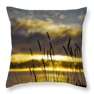 Grassy Shoreline Sunrise Throw Pillow