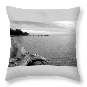Gray Day On The Bay Throw Pillow