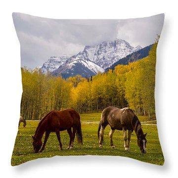 Grazing In Aspen Throw Pillow