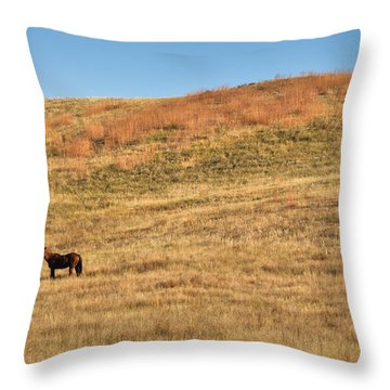 Throw Pillow featuring the photograph Grazing In The Grass by Carl Young