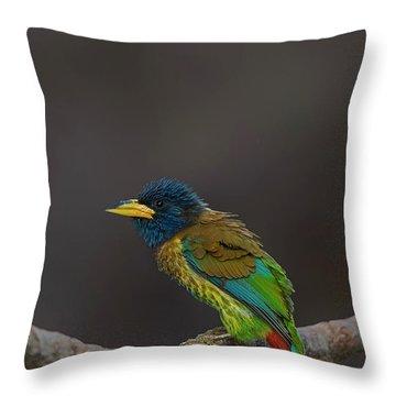 Great Barbet Throw Pillow