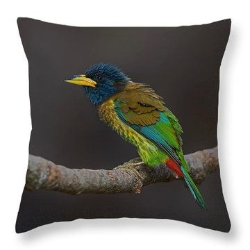 Song Bird Throw Pillows