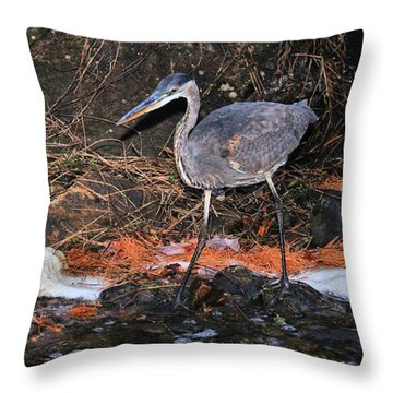 Throw Pillow featuring the photograph Great Blue Heron by Debbie Stahre