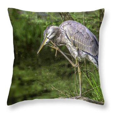 Great Blue Heron Itch Throw Pillow