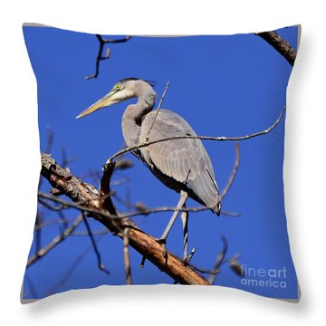 Great Blue Heron Strikes A Pose Throw Pillow
