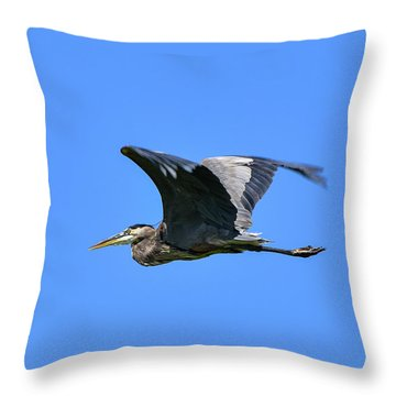 Great Blue On The Wing Throw Pillow