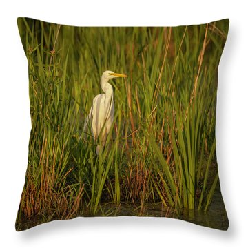 Great Egret 2019-2 Throw Pillow