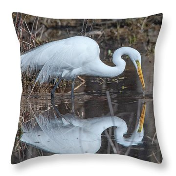 Great Egret In Breeding Plumage Dmsb0154 Throw Pillow