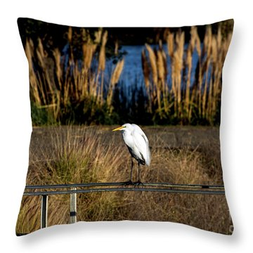 Great Egret Posing By Golden Pampas Grass Throw Pillow