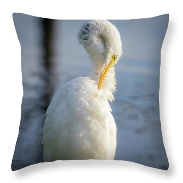 Throw Pillow featuring the photograph Great Egret - Preening Time by Ricky L Jones