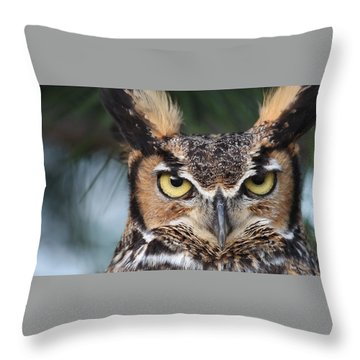 Great Horned Owl Eyes 51518 Throw Pillow