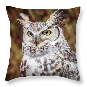 Great Horned Owl Portrait Throw Pillow
