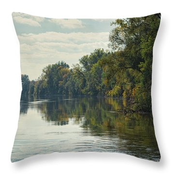 Great Morava River Throw Pillow