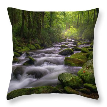 Great Smoky Mountains Gatlinburg Tennessee Throw Pillow