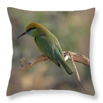 Gree Bee Eater Throw Pillow