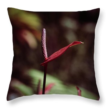 Throw Pillow featuring the photograph Greedy by Michelle Wermuth
