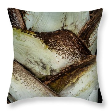 Throw Pillow featuring the photograph Green Abstract Series No.2 by Juan Contreras