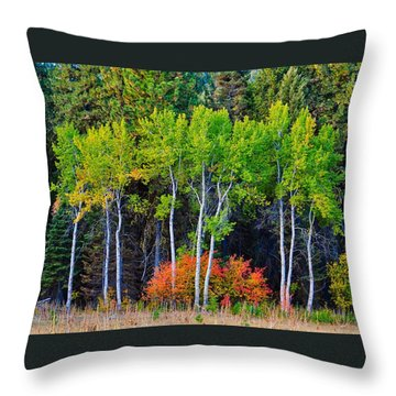 Green Aspens Red Bushes Throw Pillow
