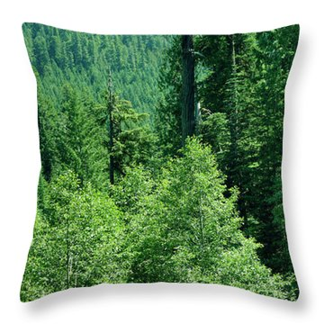Green Conifer Forest On Steep Hillside  Throw Pillow