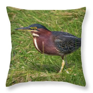 Throw Pillow featuring the photograph Green Heron Up Close by Ricky L Jones