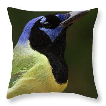 Green Jay Portrait Throw Pillow