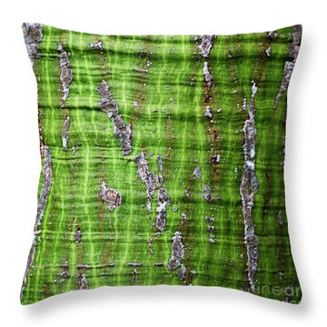 Throw Pillow featuring the photograph Green Tree Trunk Surface - Organic Patterns And Textures by Charmian Vistaunet