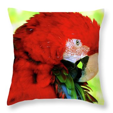 Green-winged Macaw Throw Pillow
