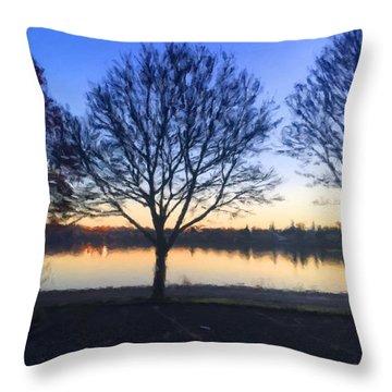 Greenlake Dawn Throw Pillow