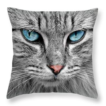 Grey Cat With Blue Eyes Throw Pillow