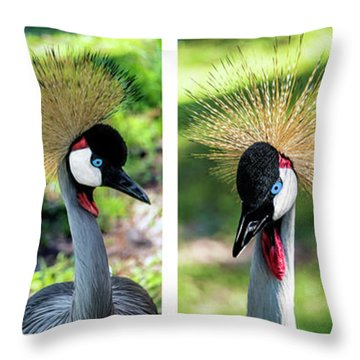 Grey Crowned Crane Gulf Shores Al Collage 1 Throw Pillow