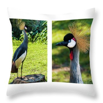 Grey Crowned Crane Gulf Shores Al Collage 10 Diptych Throw Pillow