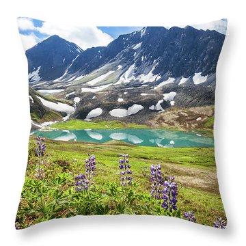 Grizzly Bear Lake Throw Pillow