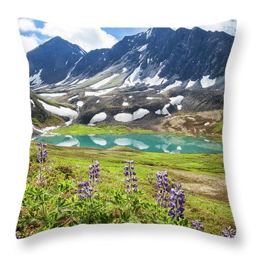 Throw Pillow featuring the photograph Grizzly Bear Lake by Tim Newton