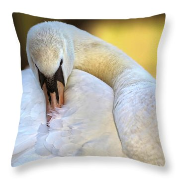 Groom The Plume Throw Pillow