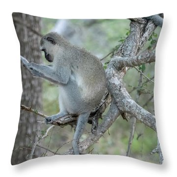Grooming Or Reading Throw Pillow