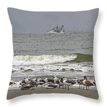 Grounded Seagulls 2 Throw Pillow