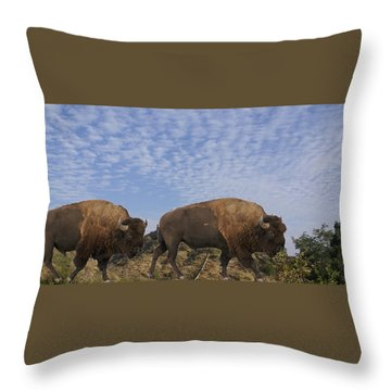 Group Of Bison Walking Against Rocky Mountains  Throw Pillow
