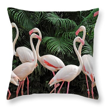 Riverside Throw Pillows