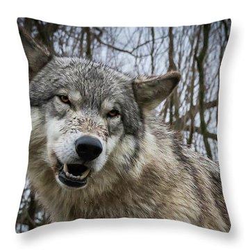 Grrrrrrrr Throw Pillow