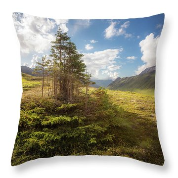 Throw Pillow featuring the photograph Haiku Forest by Tim Newton