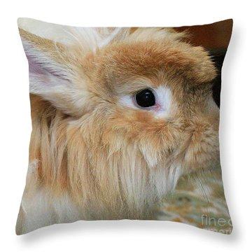 Hairy Rabbit Throw Pillow