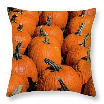 Halloween Harvest Throw Pillow