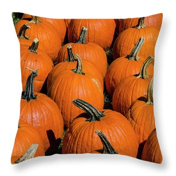 Halloween Harvest Throw Pillow