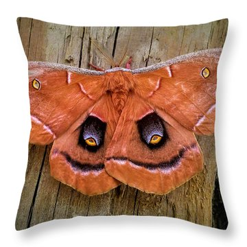 Halloween Moth Throw Pillow