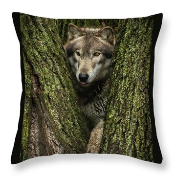 Hangin In The Tree Throw Pillow