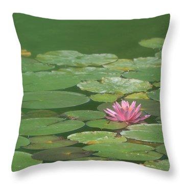 Harmonious Pink Waterlily Throw Pillow